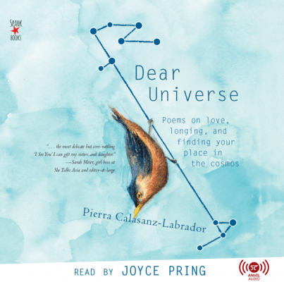 Dear Universe Audiobook
